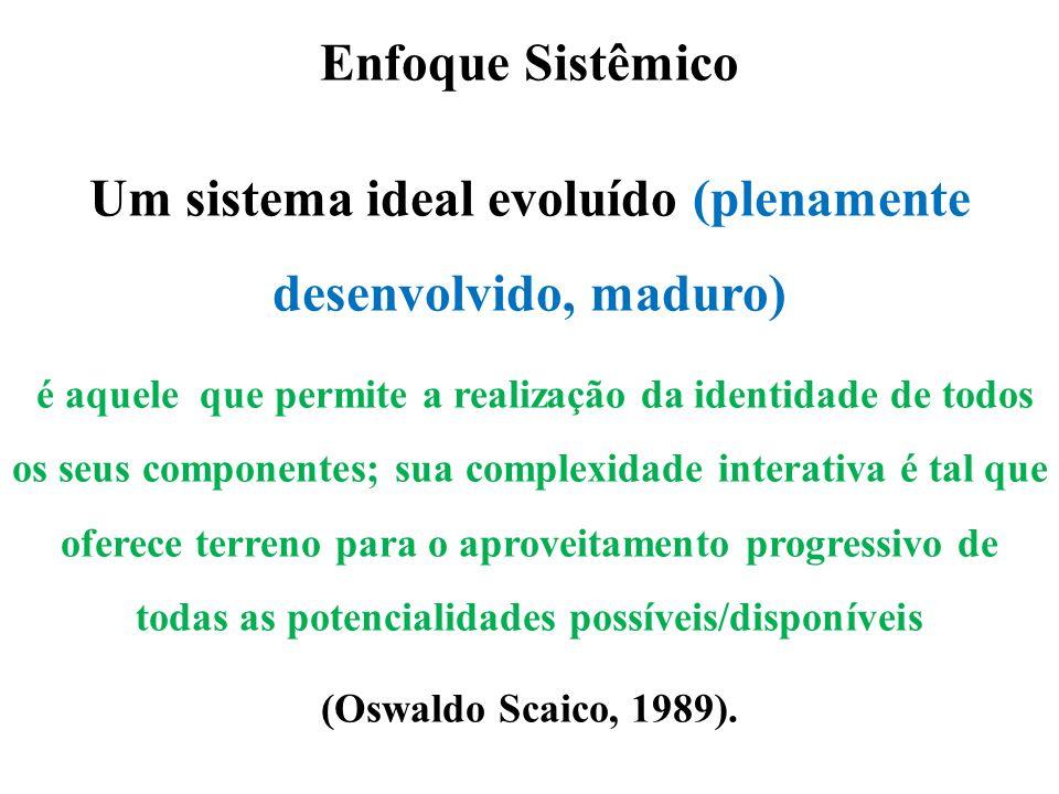 Enfoque Sistêmico Um sistema ideal evoluído (plenamente desenvolvido, maduro) é aquele que permite a realização da identidade de todos os seus compone