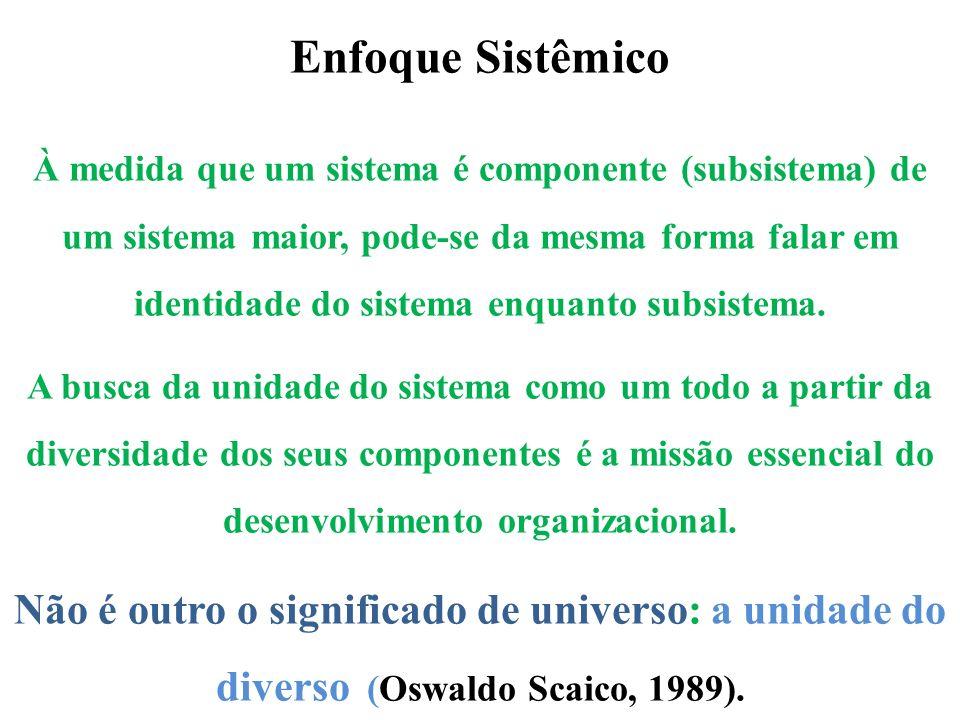 Enfoque Sistêmico À medida que um sistema é componente (subsistema) de um sistema maior, pode-se da mesma forma falar em identidade do sistema enquant