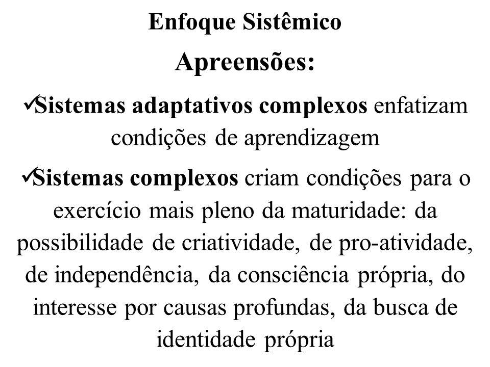 Enfoque Sistêmico Apreensões: Sistemas adaptativos complexos enfatizam condições de aprendizagem Sistemas complexos criam condições para o exercício m