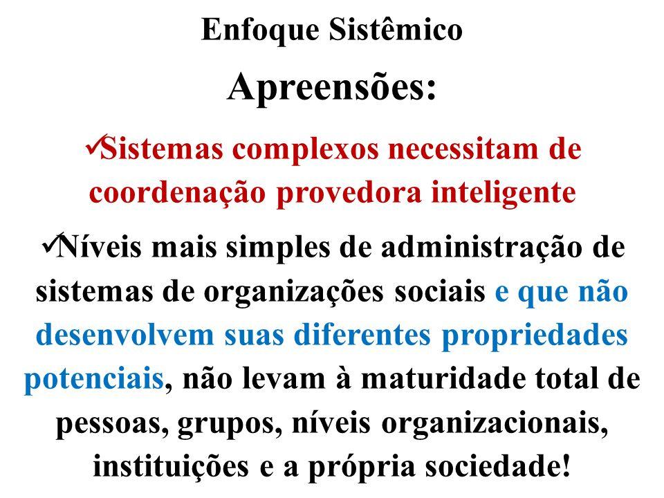 Enfoque Sistêmico Apreensões: Sistemas complexos necessitam de coordenação provedora inteligente Níveis mais simples de administração de sistemas de o