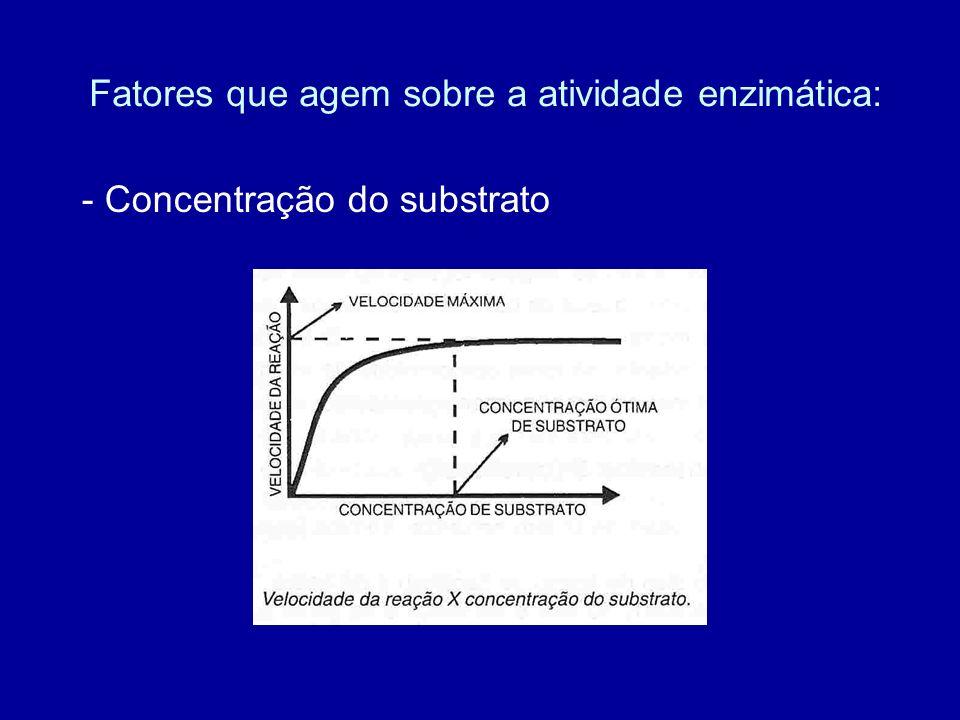 Fatores que agem sobre a atividade enzimática: - Concentração do substrato