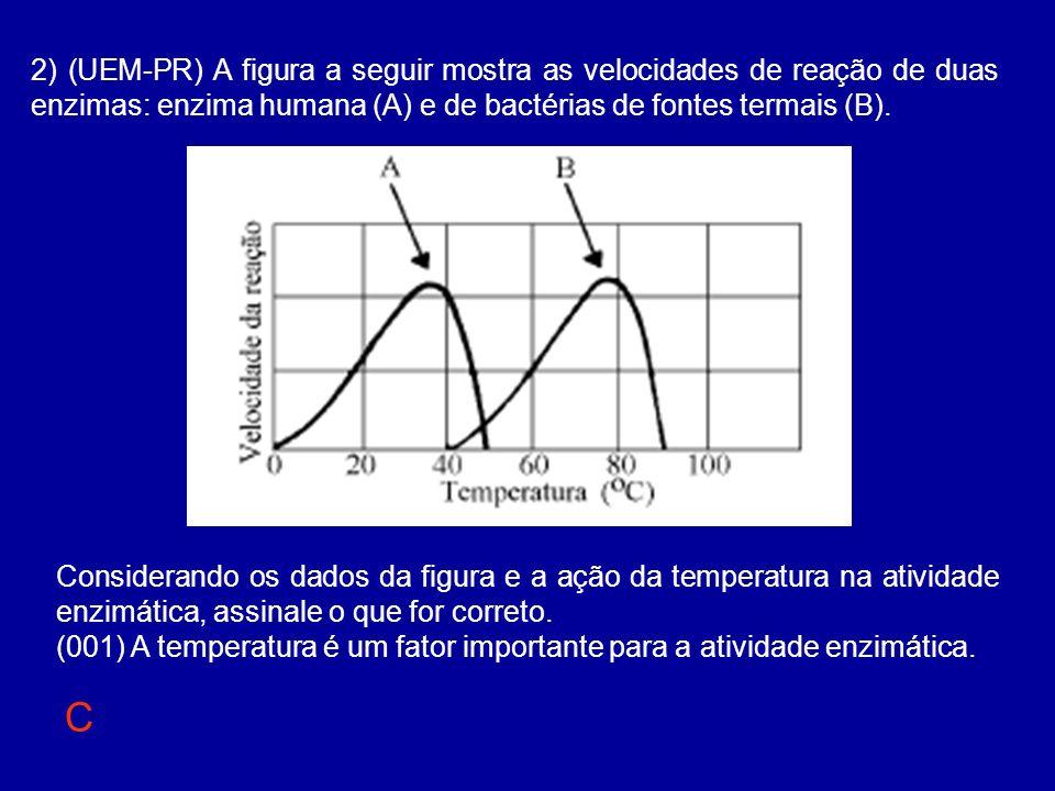 2) (UEM-PR) A figura a seguir mostra as velocidades de reação de duas enzimas: enzima humana (A) e de bactérias de fontes termais (B). Considerando os