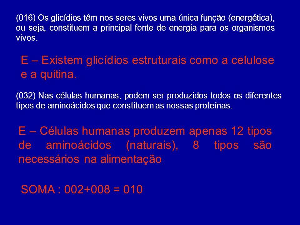(016) Os glicídios têm nos seres vivos uma única função (energética), ou seja, constituem a principal fonte de energia para os organismos vivos. (032)