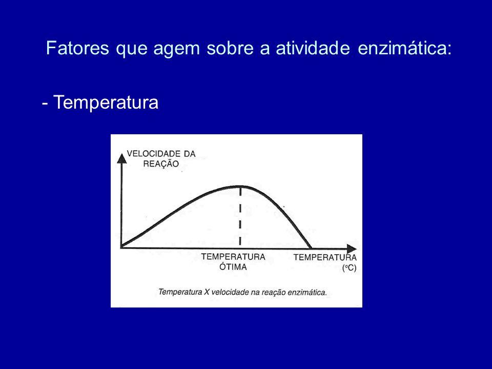 Fatores que agem sobre a atividade enzimática: - Temperatura