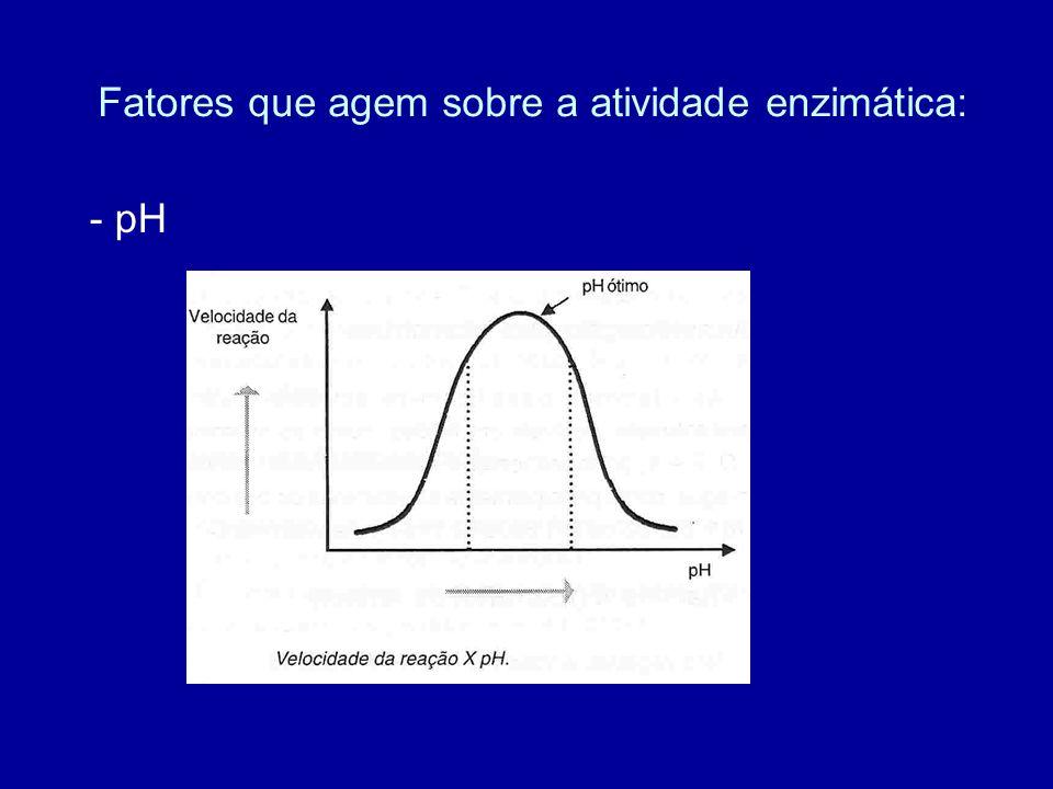 Fatores que agem sobre a atividade enzimática: - pH