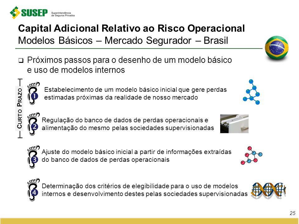 Capital Adicional Relativo ao Risco Operacional Modelos Básicos – Mercado Segurador – Brasil Próximos passos para o desenho de um modelo básico e uso