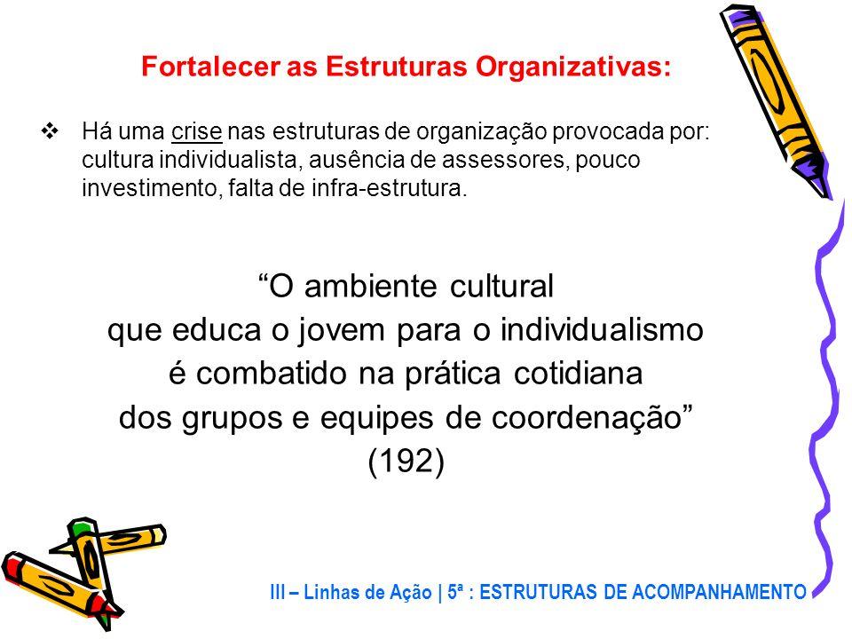 III – Linhas de Ação A organização da evangelização da juventude apresenta dois desafios: 1º) Fortalecer as estruturas organizativas 2º) Organizar o S
