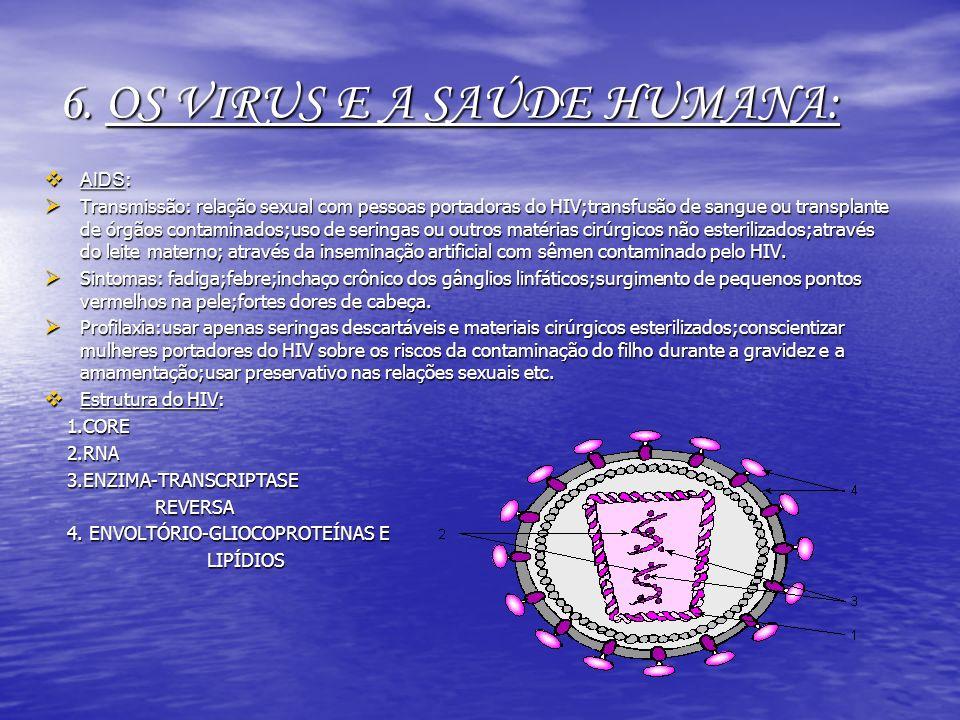 6. OS VIRUS E A SAÚDE HUMANA: AIDS : AIDS : Transmissão: relação sexual com pessoas portadoras do HIV;transfusão de sangue ou transplante de órgãos co