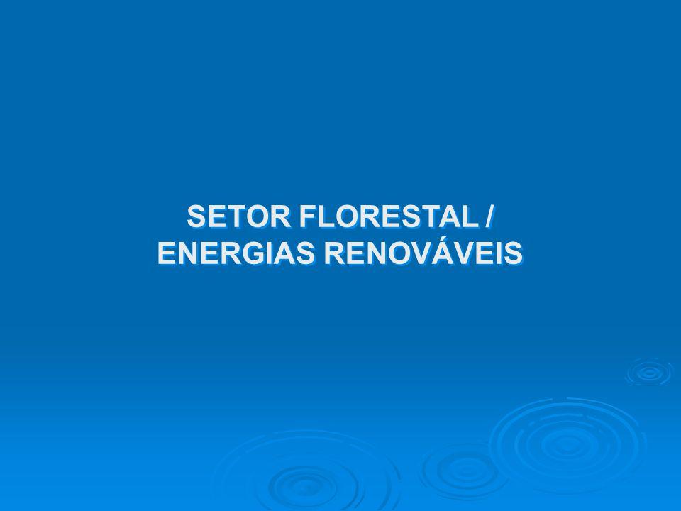 SETOR FLORESTAL / ENERGIAS RENOVÁVEIS SETOR FLORESTAL / ENERGIAS RENOVÁVEIS