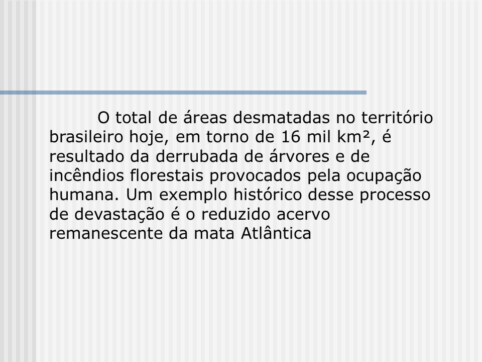 O total de áreas desmatadas no território brasileiro hoje, em torno de 16 mil km², é resultado da derrubada de árvores e de incêndios florestais provo