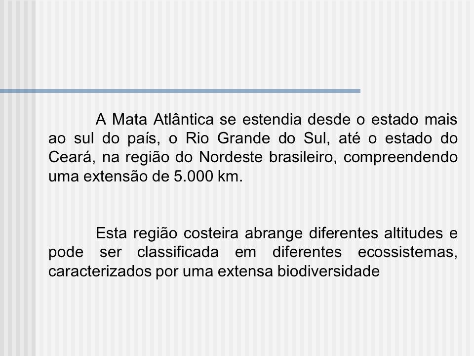 A Mata Atlântica se estendia desde o estado mais ao sul do país, o Rio Grande do Sul, até o estado do Ceará, na região do Nordeste brasileiro, compree