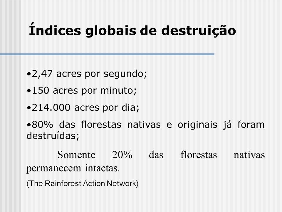 Índices globais de destruição 2,47 acres por segundo; 150 acres por minuto; 214.000 acres por dia; 80% das florestas nativas e originais já foram dest