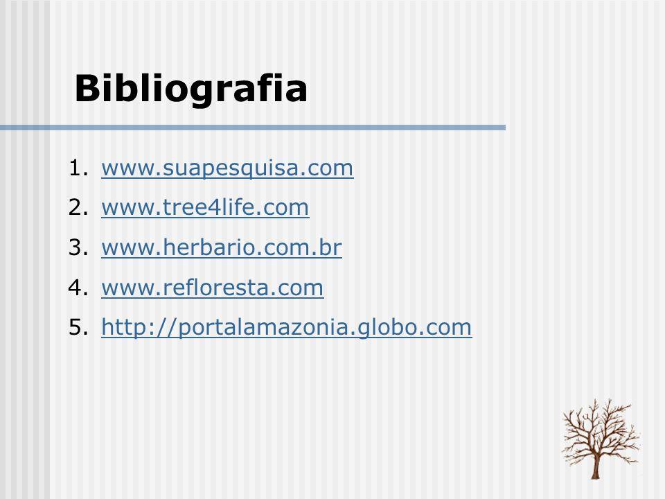 Bibliografia 1.www.suapesquisa.comwww.suapesquisa.com 2.www.tree4life.comwww.tree4life.com 3.www.herbario.com.brwww.herbario.com.br 4.www.refloresta.c