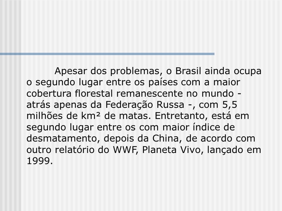 Apesar dos problemas, o Brasil ainda ocupa o segundo lugar entre os países com a maior cobertura florestal remanescente no mundo - atrás apenas da Fed