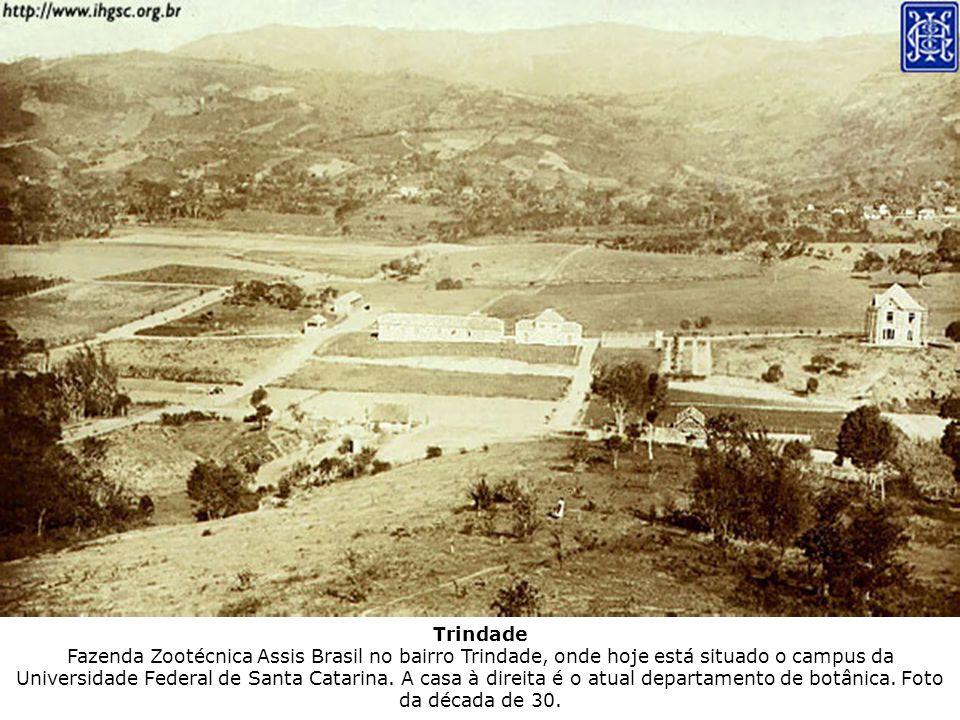 Trindade Fazenda Zootécnica Assis Brasil no bairro Trindade, onde hoje está situado o campus da Universidade Federal de Santa Catarina. A casa à direi