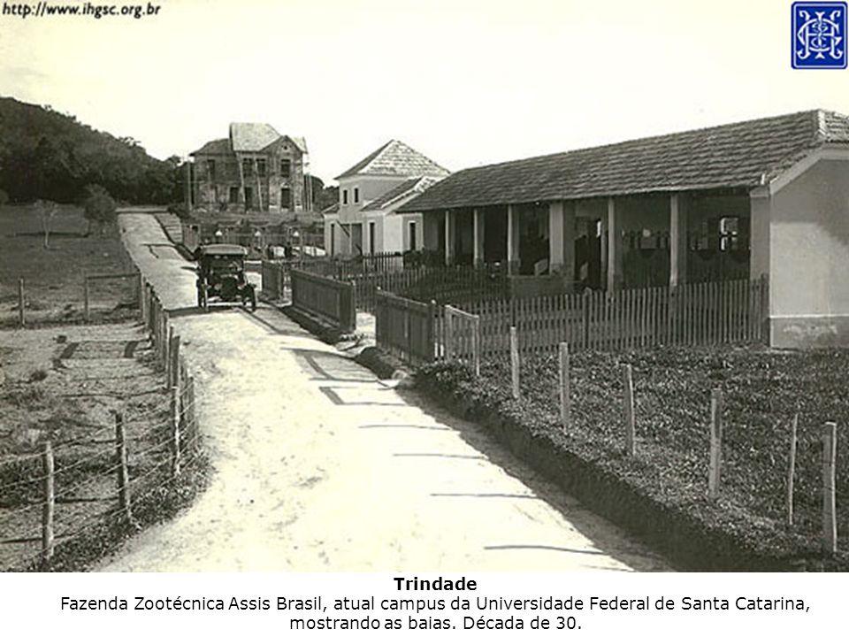 Trindade Fazenda Zootécnica Assis Brasil, atual campus da Universidade Federal de Santa Catarina, mostrando as baias. Década de 30.