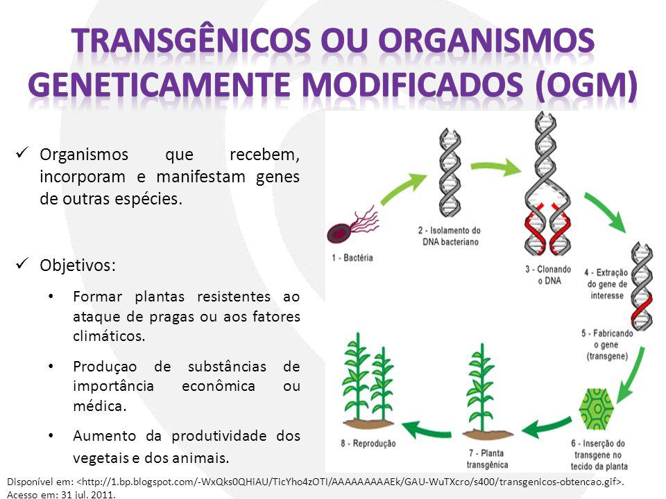 Organismos que recebem, incorporam e manifestam genes de outras espécies. Objetivos: Formar plantas resistentes ao ataque de pragas ou aos fatores cli