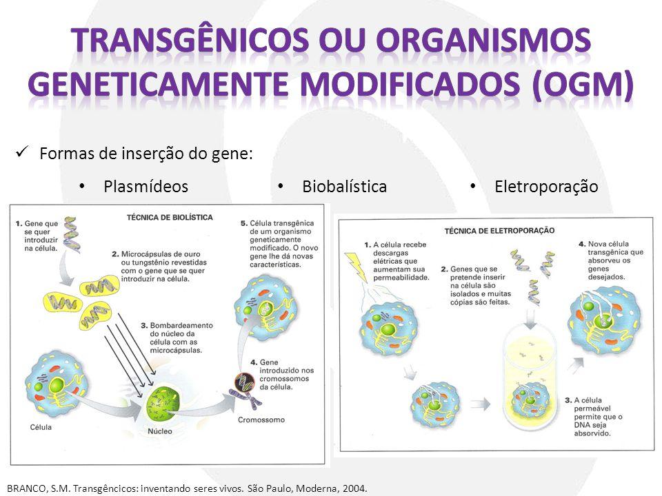 BRANCO, S.M. Transgêncicos: inventando seres vivos. São Paulo, Moderna, 2004. Formas de inserção do gene: Plasmídeos Biobalística Eletroporação