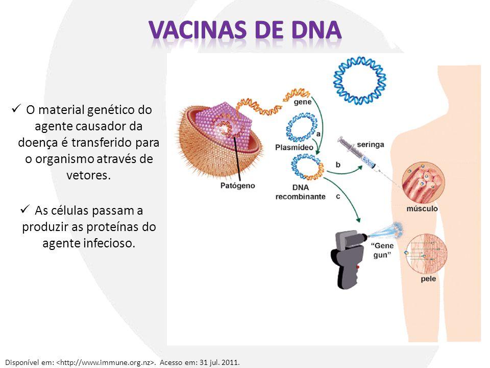 O material genético do agente causador da doença é transferido para o organismo através de vetores. As células passam a produzir as proteínas do agent