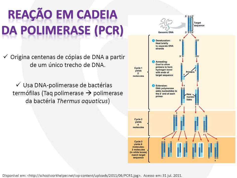 Origina centenas de cópias de DNA a partir de um único trecho de DNA. Usa DNA-polimerase de bactérias termófilas (Taq polimerase polimerase da bactéri