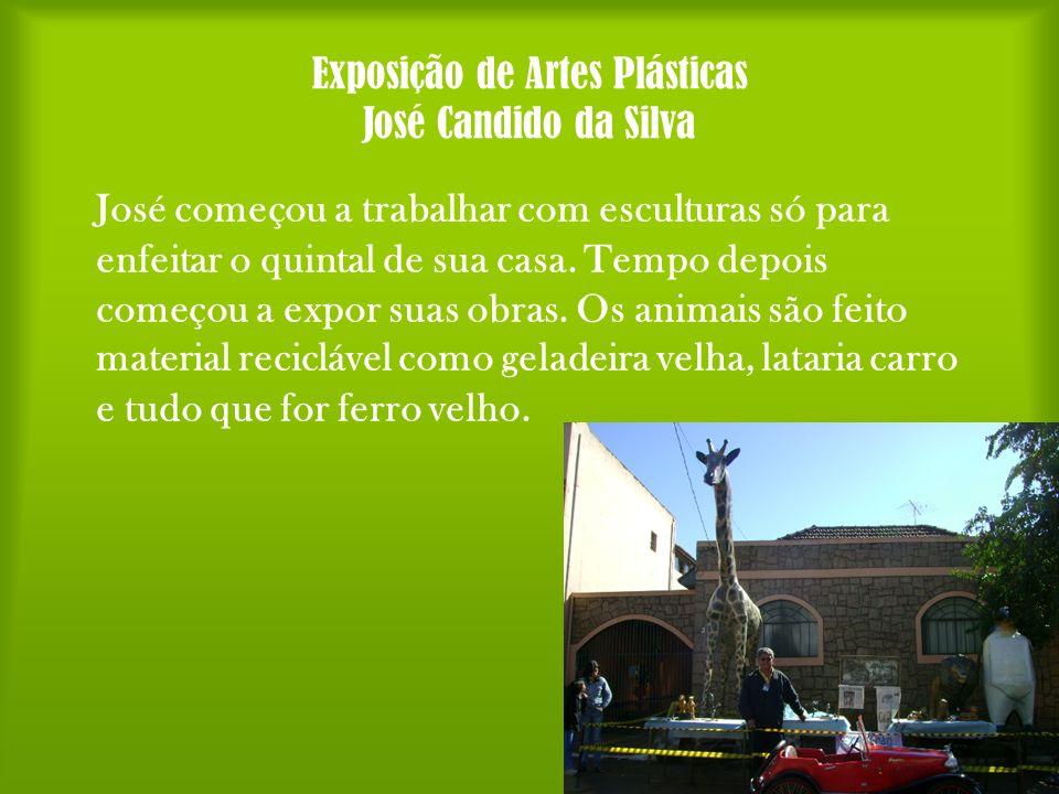 Exposição de Artes Plásticas José Candido da Silva José começou a trabalhar com esculturas só para enfeitar o quintal de sua casa. Tempo depois começo