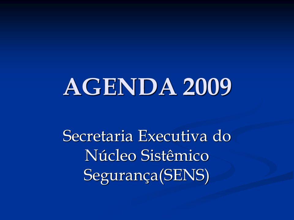 AGENDA 2009 Secretaria Executiva do Núcleo Sistêmico Segurança(SENS)