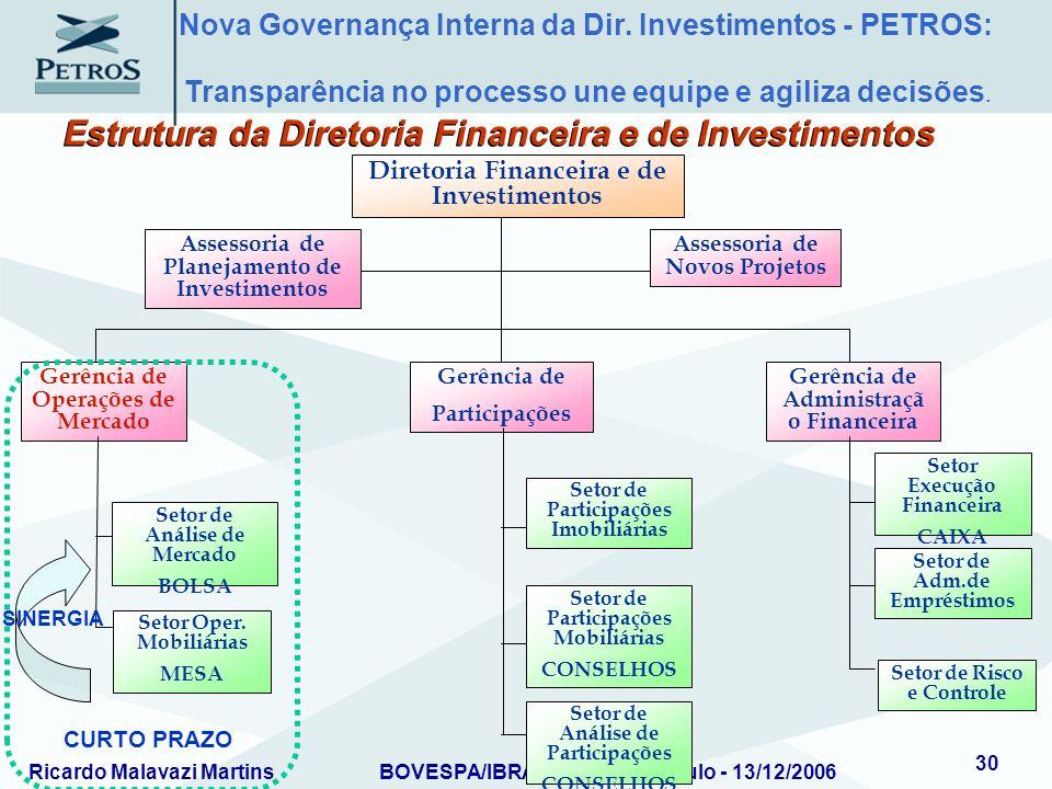 Ricardo Malavazi MartinsBOVESPA/IBRADEMP – São Paulo - 13/12/2006 30 Assessoria de Planejamento de Investimentos Assessoria de Novos Projetos Diretori