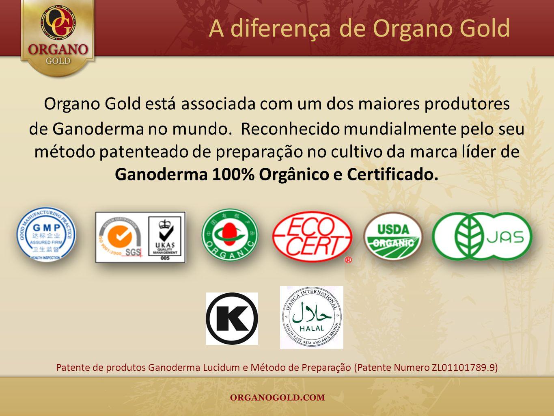 Organo Gold está associada com um dos maiores produtores de Ganoderma no mundo. Reconhecido mundialmente pelo seu método patenteado de preparação no c