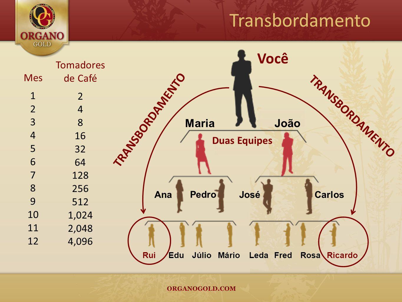 Mes 1 2 3 4 5 6 7 8 9 10 11 12 Tomadores de Café 2 4 8 16 32 64 128 256 512 1,024 2,048 4,096 Transbordamento Você Duas Equipes JoãoMaria JoséCarlosAn