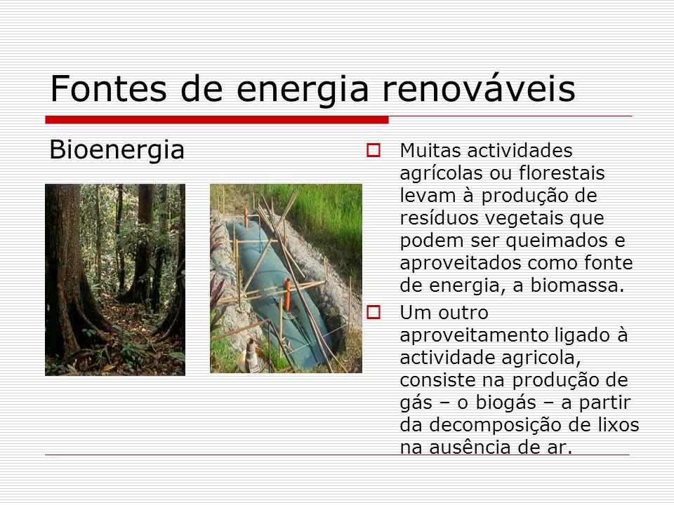 Fontes de energia renováveis Bioenergia Muitas actividades agrícolas ou florestais levam à produção de resíduos vegetais que podem ser queimados e apr