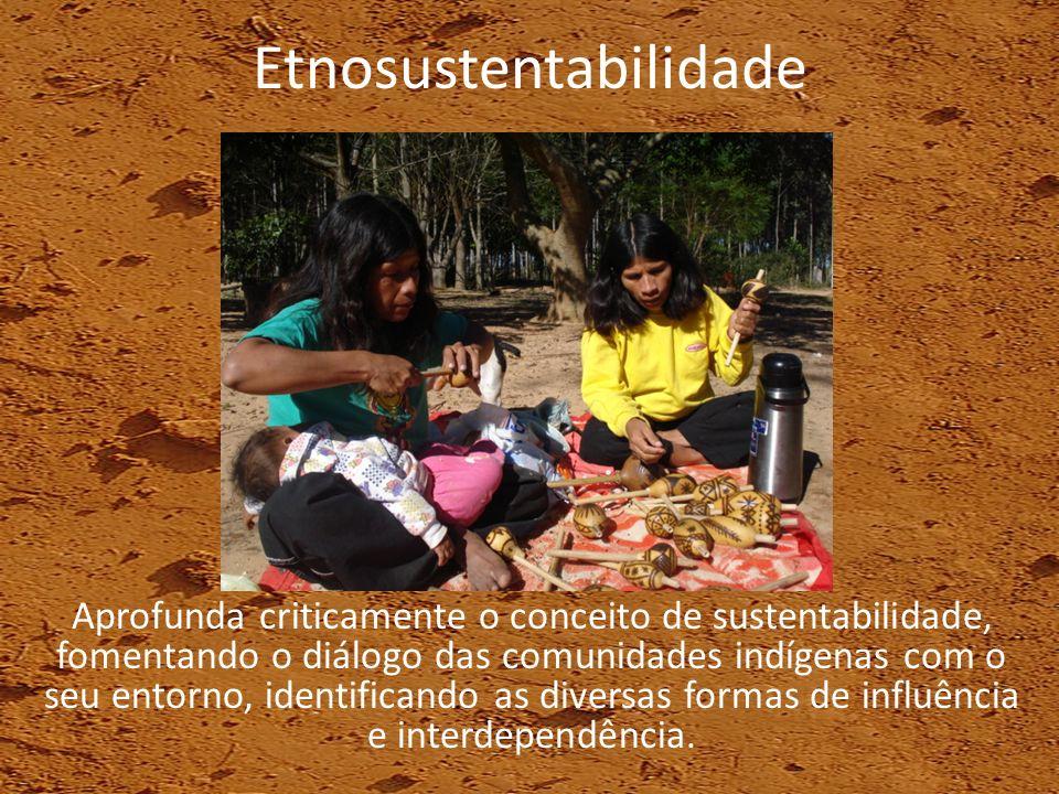 Etnosustentabilidade Aprofunda criticamente o conceito de sustentabilidade, fomentando o diálogo das comunidades indígenas com o seu entorno, identifi
