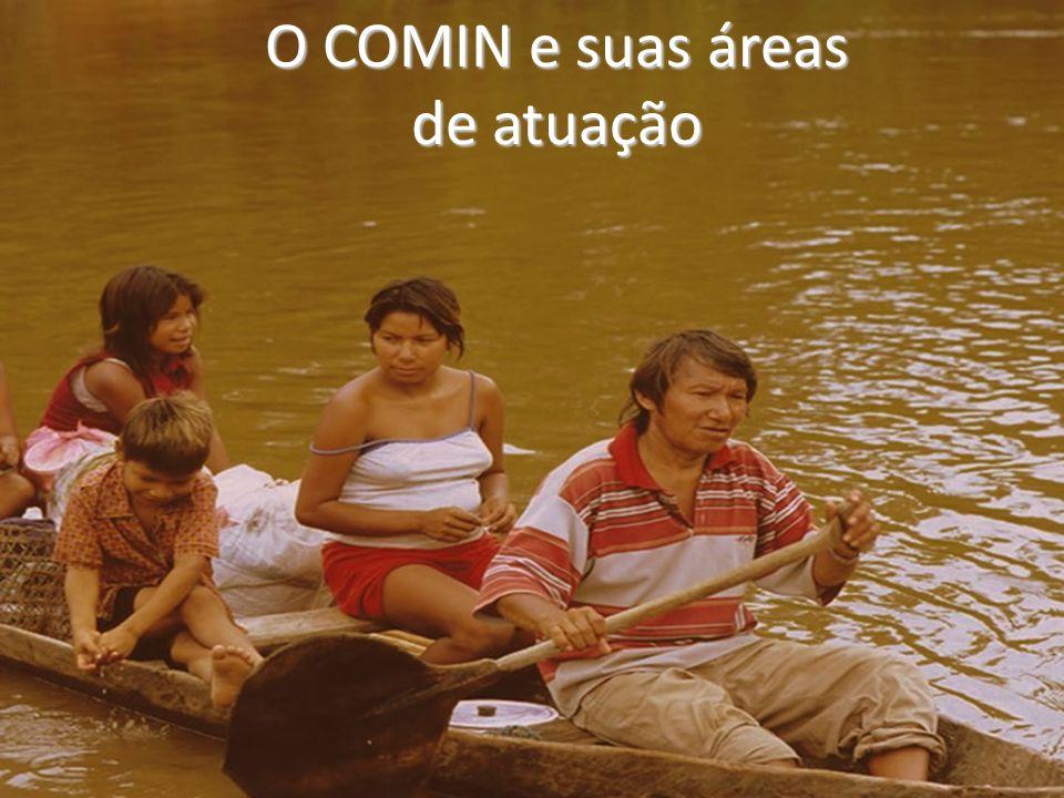 Produz material didático para educadores(as) e educandos(as), contribuindo com a lei 11.465/08 que inclui história e cultura indígena no currículo das escolas públicas e privadas do Brasil.