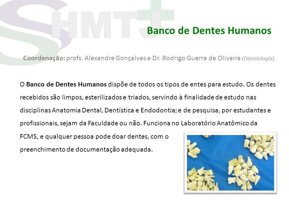 Banco de Dentes Humanos Coordenação: profs. Alexandre Gonçalves e Dr. Rodrigo Guerra de Oliveira (Odontologia). O Banco de Dentes Humanos dispõe de to