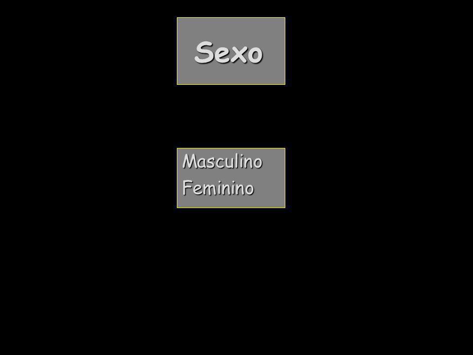 Sexo Sexo MasculinoFeminino