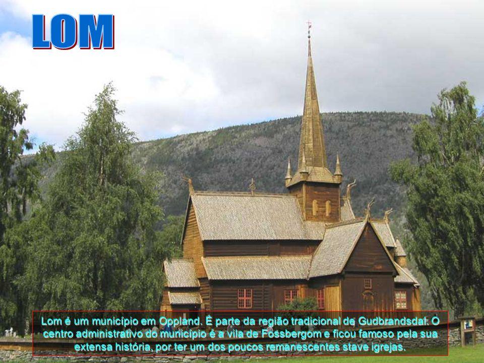 O fiorde Naeroyfjord é um fiorde situado na comuna de Aurland, em Sogn og Fjordane, na Noruega. Possui uma extensão de cerca de 20 quilómetros, sendo