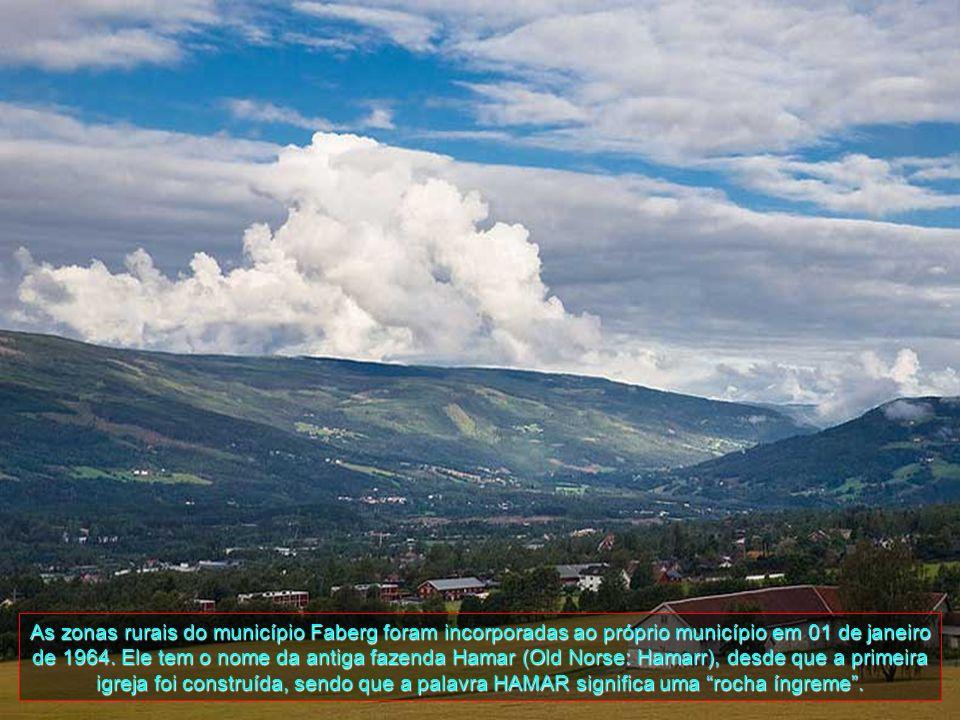 Lillehammer está localizada ao sul do município de Over ao sudeste da Gausdal, nordeste do Nordre Terra e ao norte de Gjovik, todos em Oppland adminst