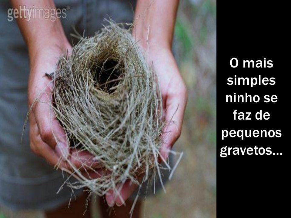 O mais simples ninho se faz de pequenos gravetos...