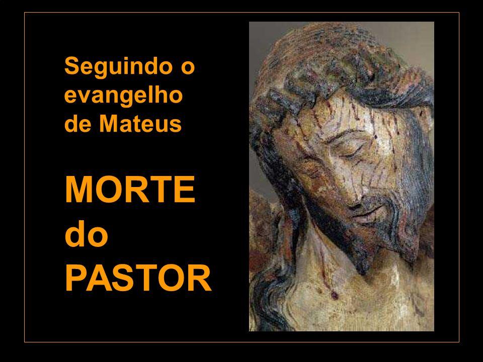 Seguindo o evangelho de Mateus MORTE do PASTOR