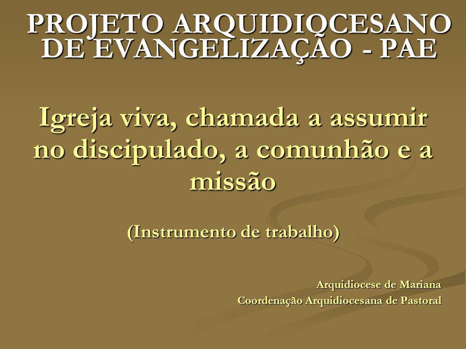 ORIENTAÇÕES GERAIS O Documento de estudos do Projeto Arquidiocesano de Evangelização centraliza esforços a partir de dois eixos: Comunidade e missão: Igreja Comunidade de Comunidades e em estado permanente de missão.