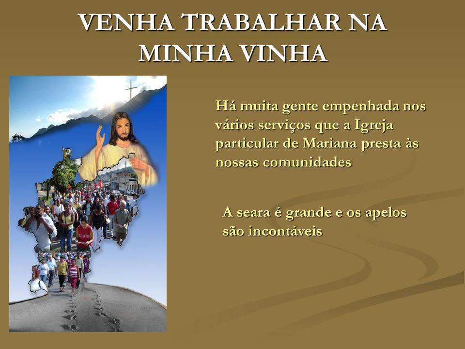 VENHA TRABALHAR NA MINHA VINHA Há muita gente empenhada nos vários serviços que a Igreja particular de Mariana presta às nossas comunidades A seara é