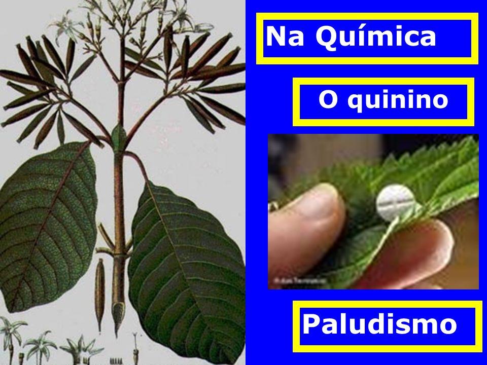 O quinino Na Química Paludismo