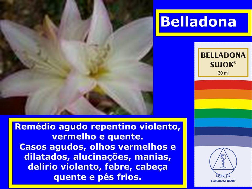 Belladona Remédio agudo repentino violento, vermelho e quente.