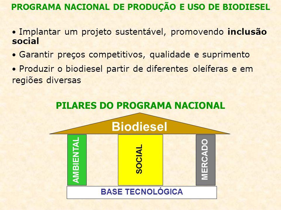 Implantar um projeto sustentável, promovendo inclusão social Garantir preços competitivos, qualidade e suprimento Produzir o biodiesel partir de diferentes oleíferas e em regiões diversas PROGRAMA NACIONAL DE PRODUÇÃO E USO DE BIODIESEL PILARES DO PROGRAMA NACIONAL Biodiesel AMBIENTAL SOCIAL MERCADO BASE TECNOLÓGICA