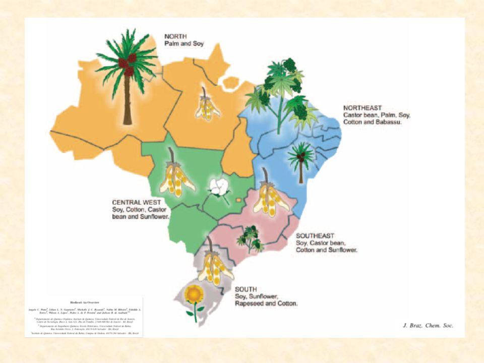 2003 Comissão Executiva Interministerial deliberativo Coordenação: Casa Civil Participação: 14 ministérios Grupo Gestor operacional Coordenação: MME Participação: 14 ministérios + BNDES, Embrapa, Petrobras e ANP GESTÃO DO PROGRAMA