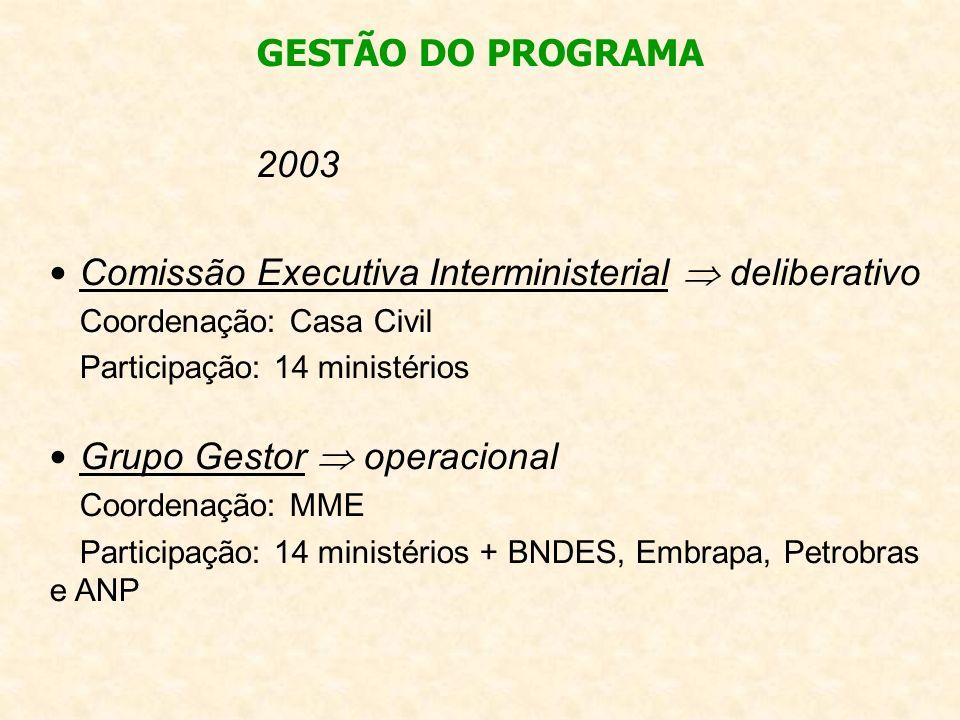 2003 Comissão Executiva Interministerial deliberativo Coordenação: Casa Civil Participação: 14 ministérios Grupo Gestor operacional Coordenação: MME P