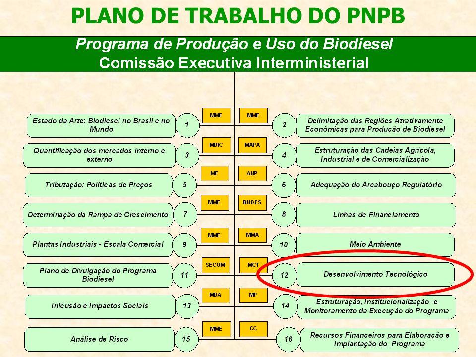2ª Etapa (2006-2007) Contratação de Projetos de P&D em Biodiesel: encomendas e edital R$ 32 milhões AÇÕES