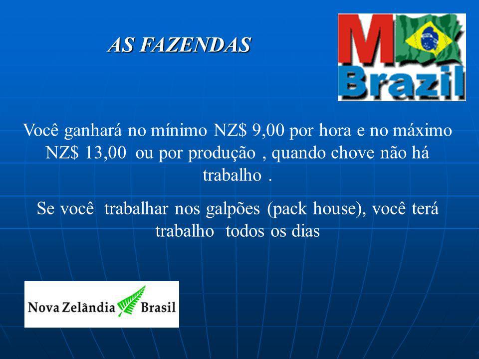 O investimento O investimento para este programa é de : Taxa da M/Brazil : R$ 2000,00( plano pós-pago ) + Passagem US$ 1500 valor médio + verba de viagem US$1000 Valor Aprox.