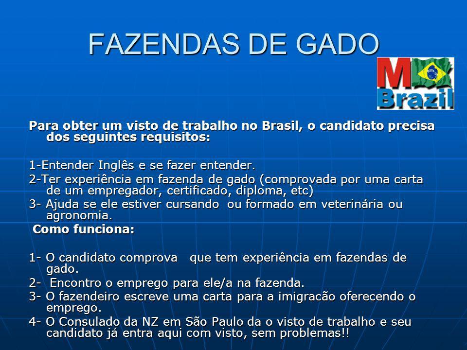 FAZENDAS DE GADO Para obter um visto de trabalho no Brasil, o candidato precisa dos seguintes requisitos: 1-Entender Inglês e se fazer entender. 2-Ter