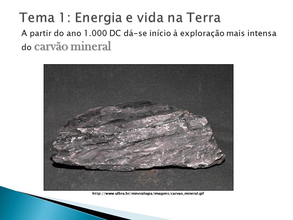carvão mineral A partir do ano 1.000 DC dá-se início à exploração mais intensa do carvão mineral http://www.ulbra.br/mineralogia/imagens/carvao_minera