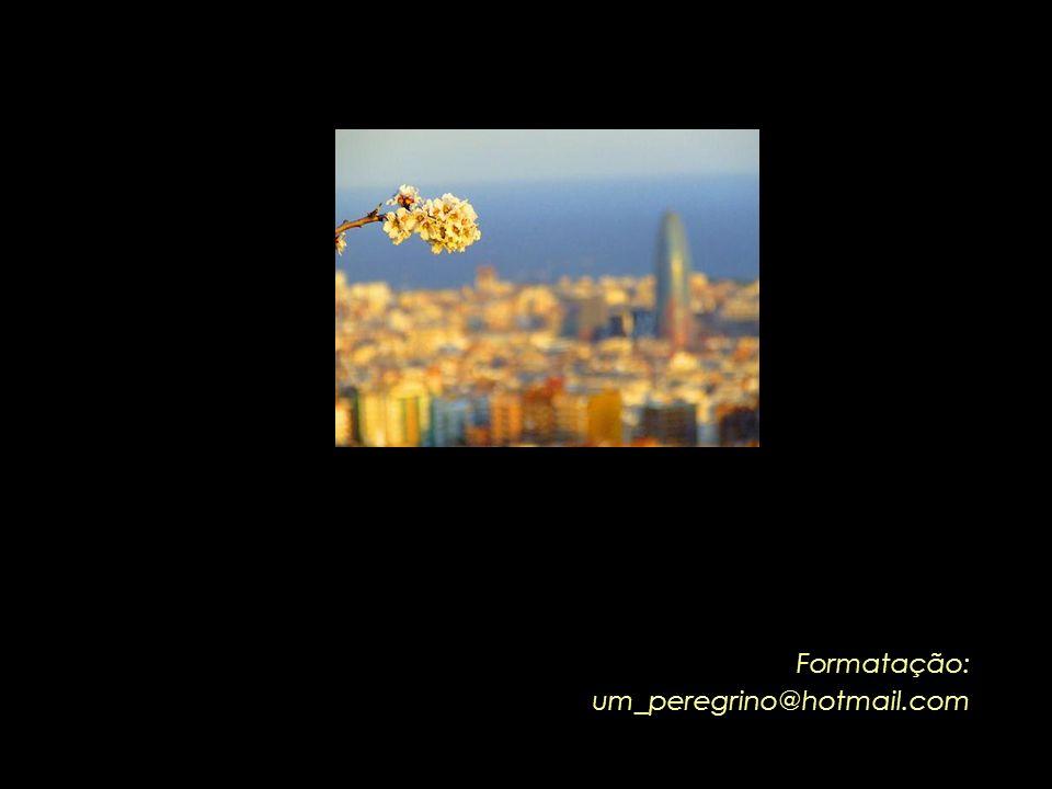 A Força da Ternura, de Leonardo Boff Alguns trechos adaptados da obra: www.leonardoboff.com.br - Pensamentos para um mundo igualitário, solidário, ple